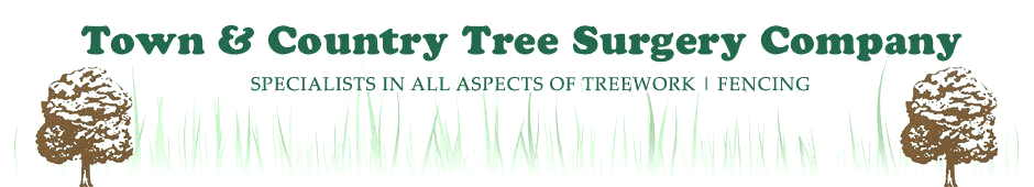 Town & Country Tree Surgery logo