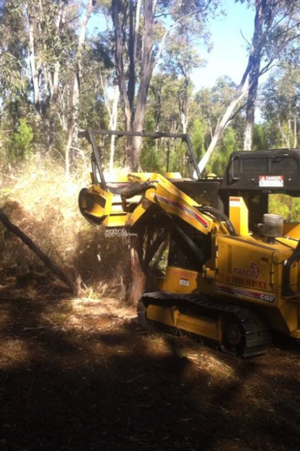 yellow tree removing equipment