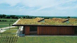 realizzazione di tetto giardino