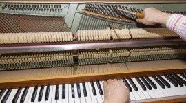 accessori per fiati, casa editrice musicale, esposizione strumenti musicali