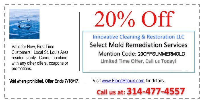 mold removal coupon st louis