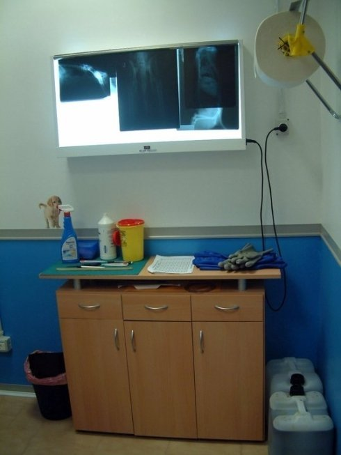 radiologia Veterinaria,