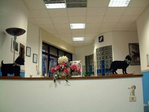 Clinica veterinaria Tuscania,