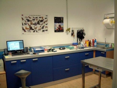clinica veterinaria, Tuscania, Viterbo