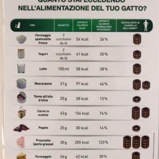 consigli, alimentazione del gatto, Tuscania, Viterbo