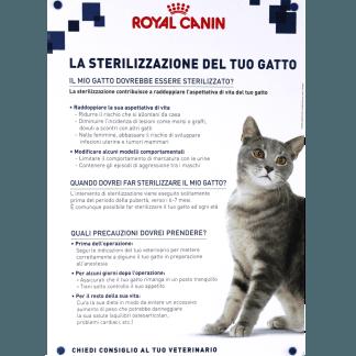 sterilizzazione, gatto, cane, Tuscania, Viterbo