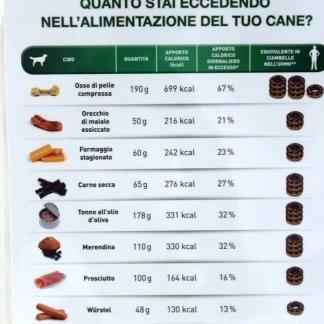 alimentazione del cane, Tuscania, Viterbo