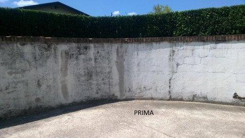 un muro esterno rovinato e vista delle siepi