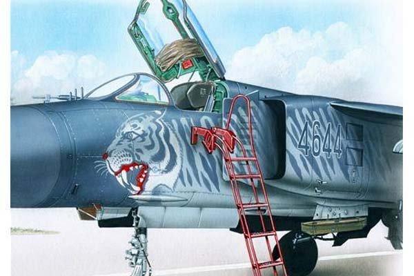 Aereo con aerografia di una tigre