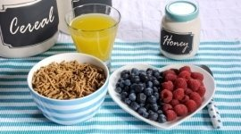 scienza dell'alimentazione, biologia nutrizionistica
