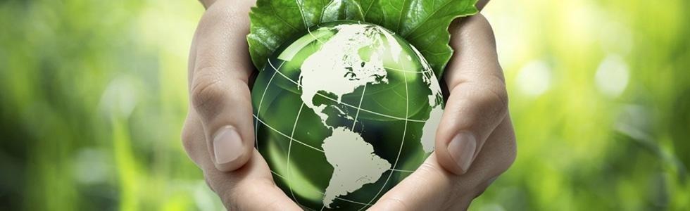 ECO GREEN srl - consulenza per la Sicurezza e l