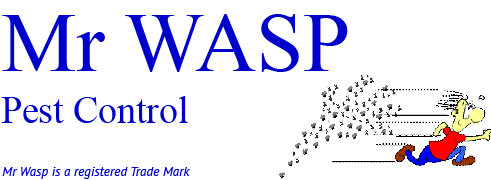 Mr WASP logo