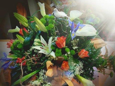fiori valdobbiadene
