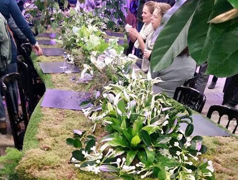 vendita fiori freschi valdobbiadene