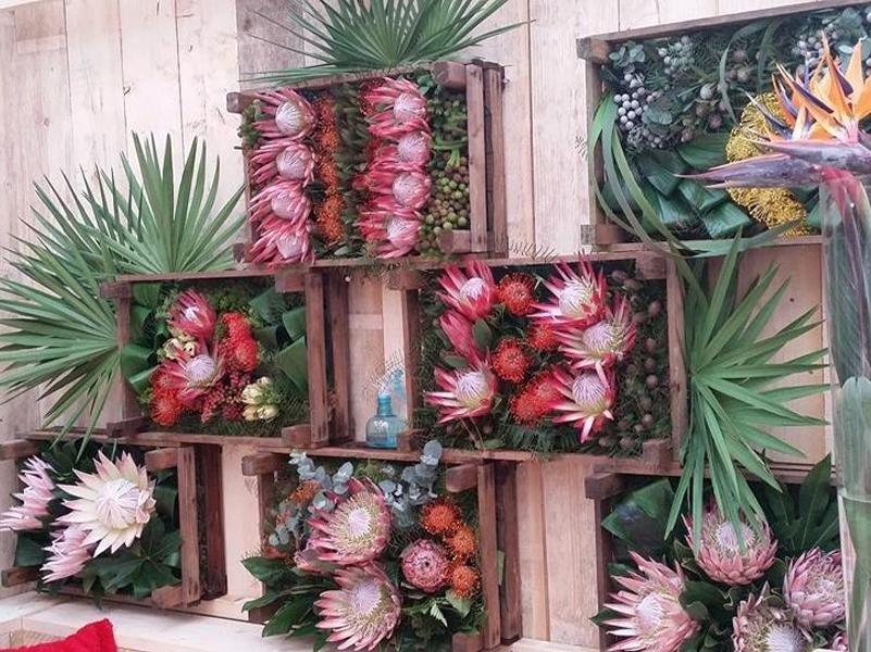 vendita fiori freschi feltre