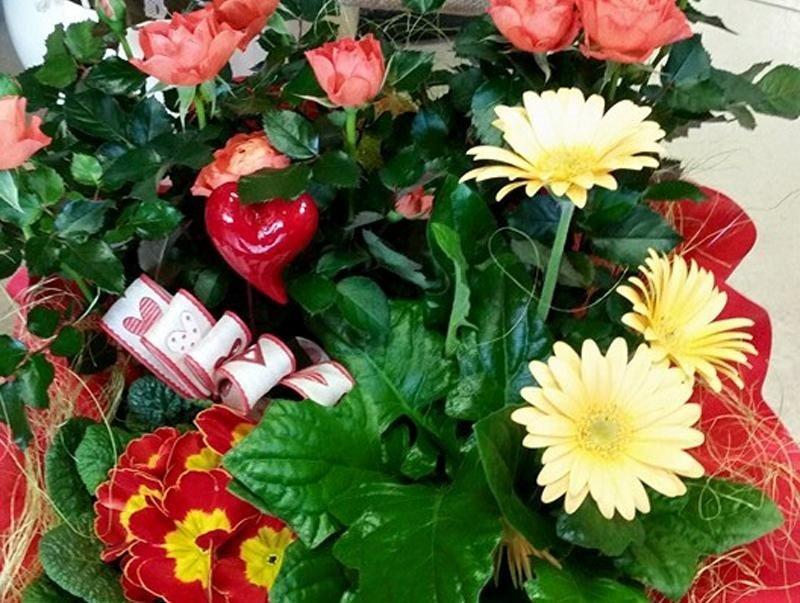 composizioni floreali quero vas