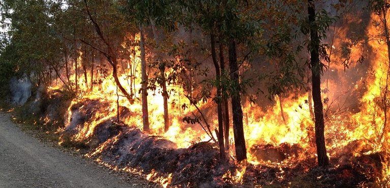 hawkins enterprises bushfire
