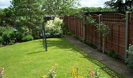 larch lap fencing & trellis install