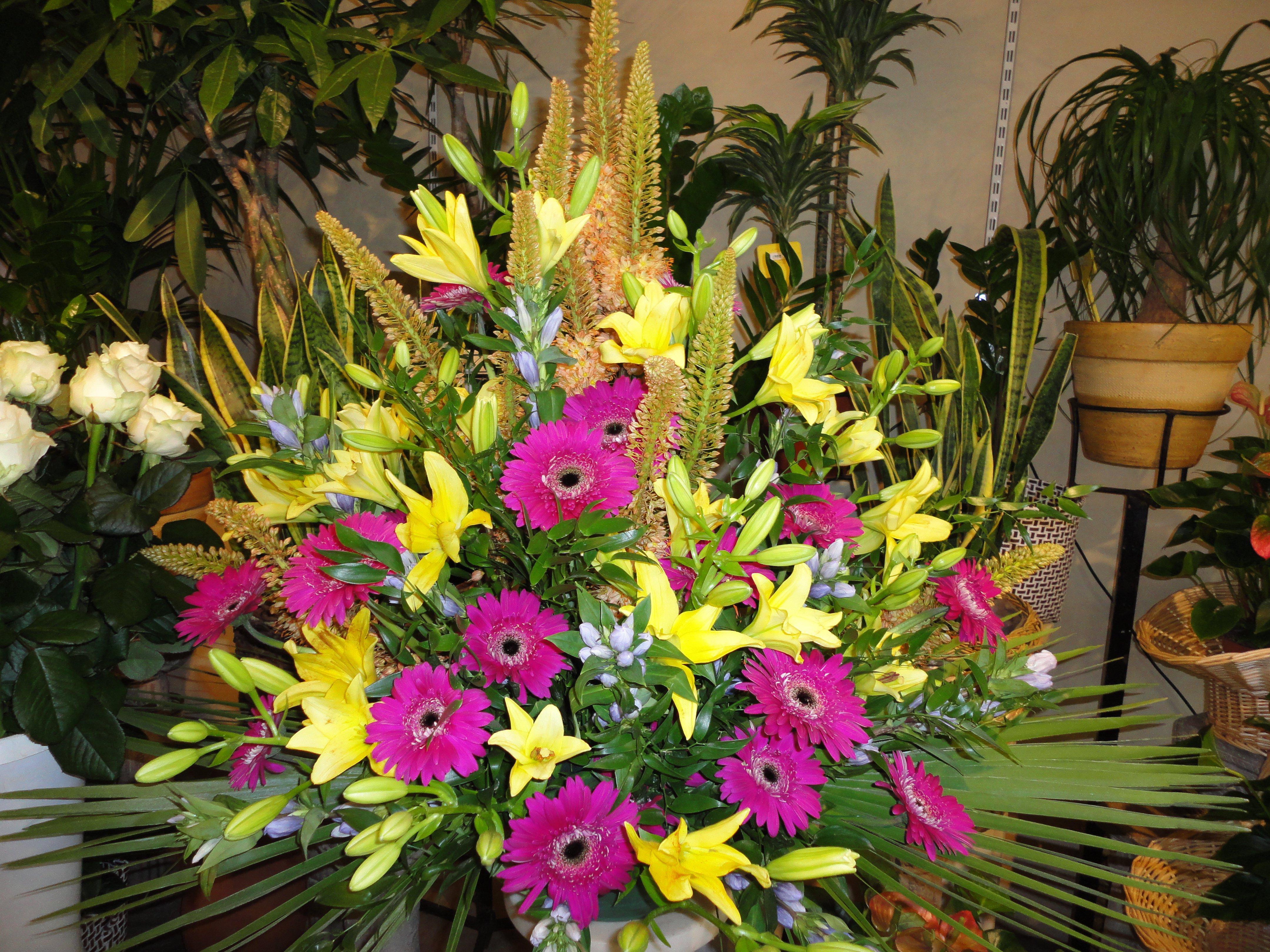 composizione di margherite viola e fiori gialli