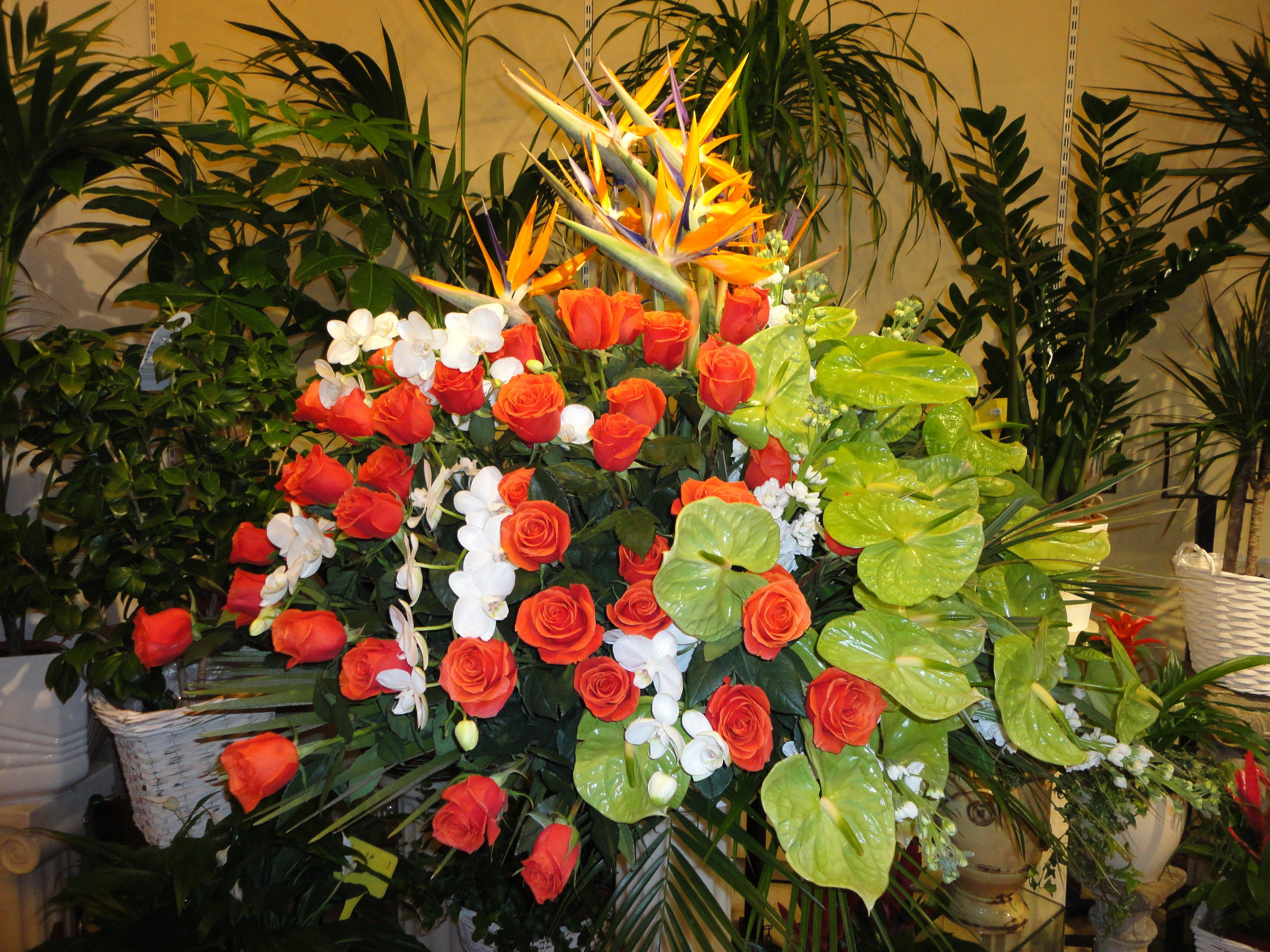 mazzo di fiori con piante sul retro