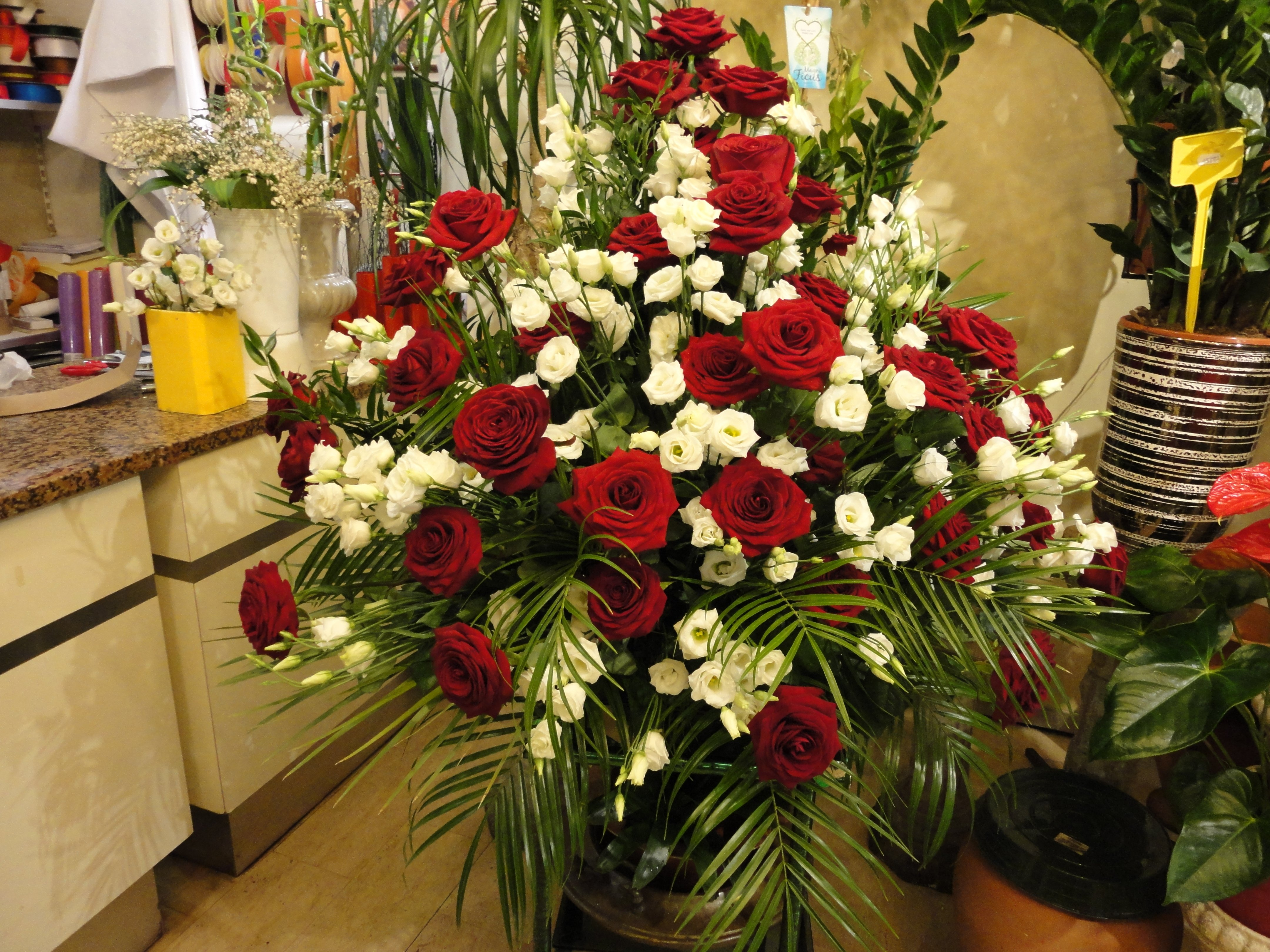 rose bianche e rosse