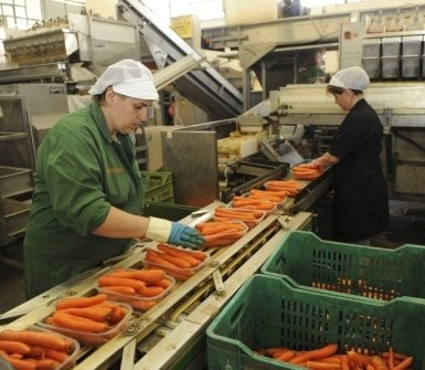 prodotti agricoli, azienda ortofrutticola, vendita ortaggi