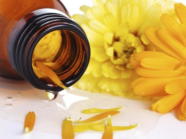 Homeopathy and phytotherapy