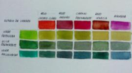 campionatura colori