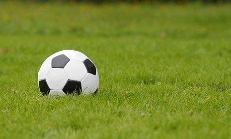 pallone da calcio in un campo da calcio a Erba