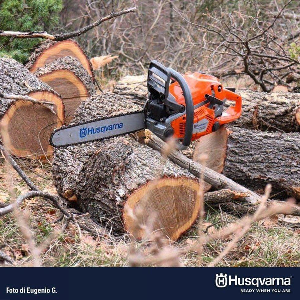sega per legna