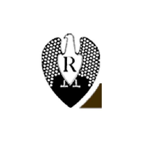 Logo di un'aquila con la scritta R