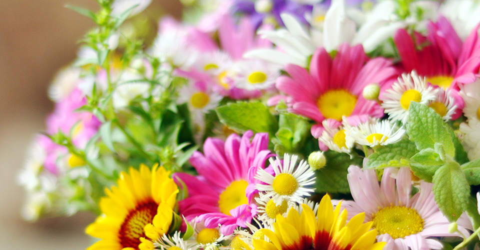 trusted florist