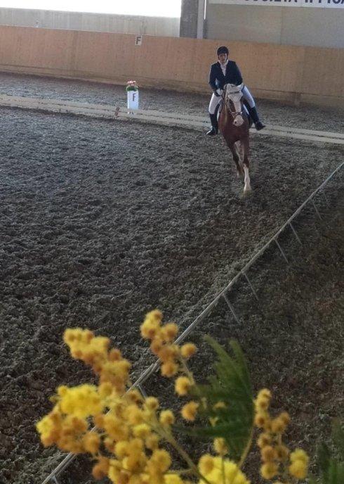 Campo lungo di una lezione di equitazione