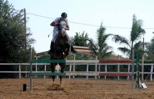 un fantino che salta un ostacolo a cavallo