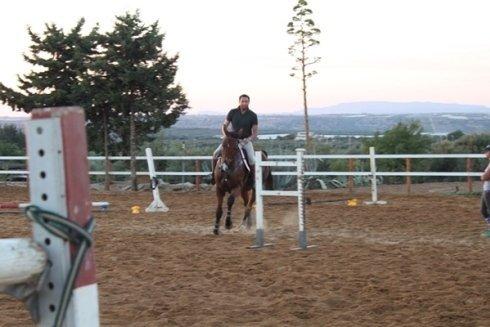 Cavallo con fantino in percorso ad ostacoli