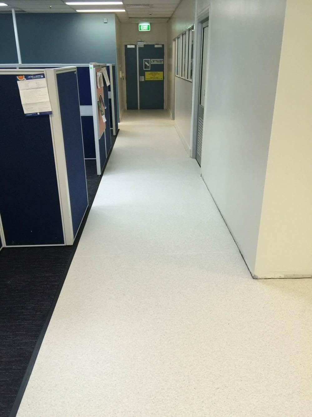 white carpeted hallway