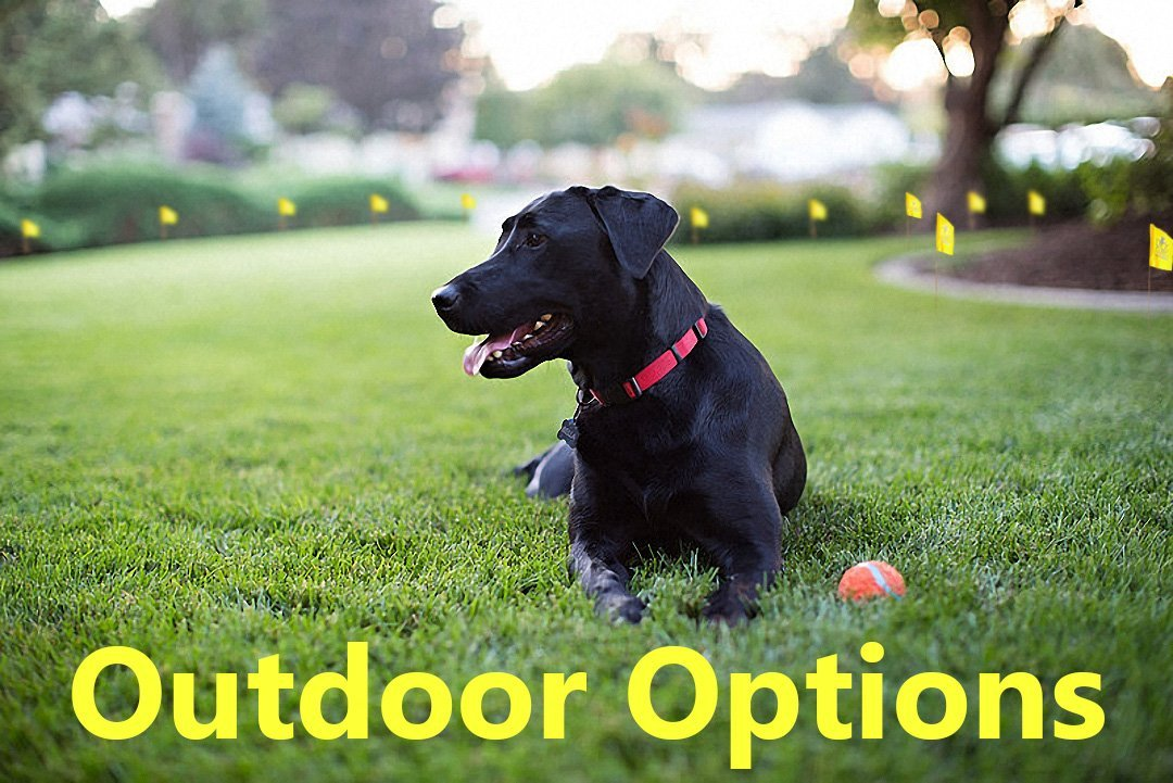 Dog Guard Outdoor Solutions
