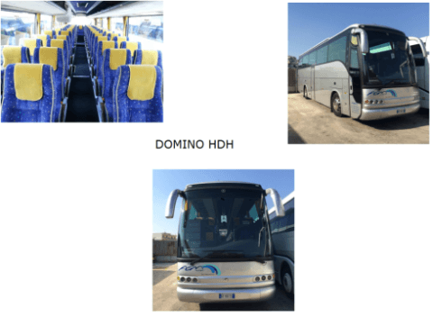 Domino HDH