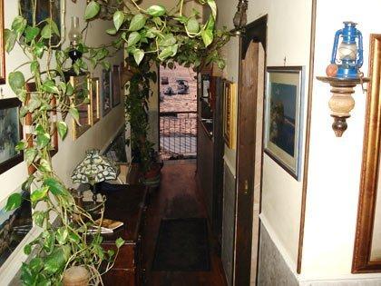 un corridoio con vista di piante rampicanti e un mobile in legno