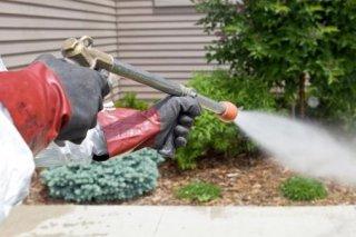 disinfestazione giardini