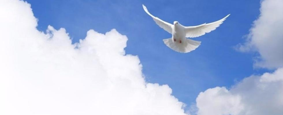 Funerali in sabina, funerali rieti, funerali Monteleone in sabina