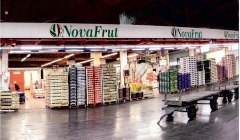 Paletten Obst und Gemüse