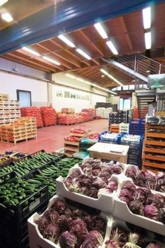Großhandel Gemüse