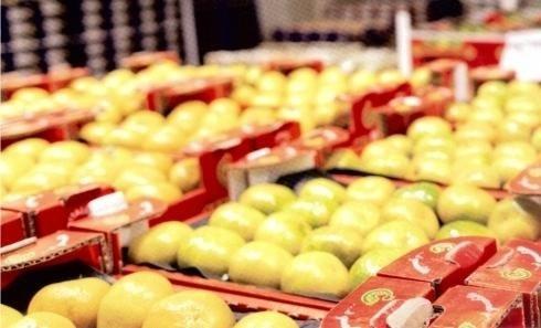Apfelkisten