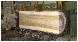produzione legname costruzione