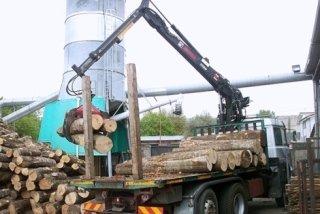importazione legname