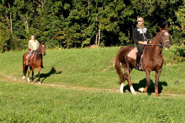 una donna e un uomo su dei cavalli