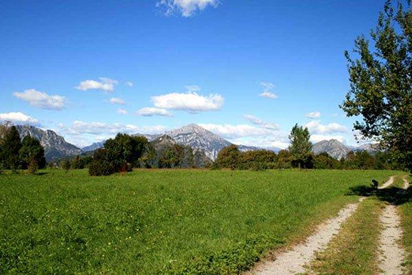 un prato verde e vista delle colline