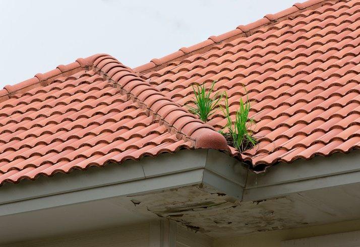 roof repairs in San Antonio, TX