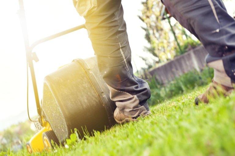 manutenzione giardini, giardinaggio, taglio erba,